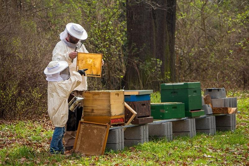 Včelařský plášť